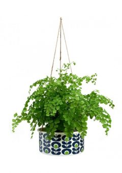 Orla Kiely hanging plant pot Large