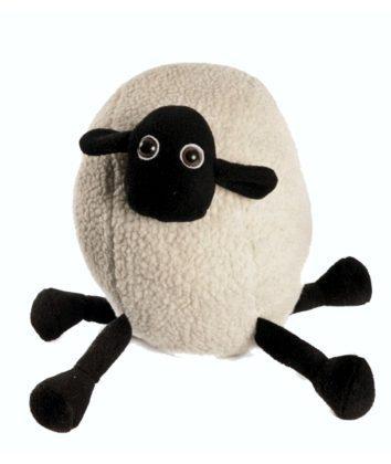 Karoo Sheep Percy Ball